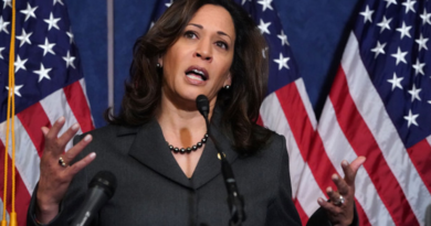 Kamala Harris is making history in the 2020 race